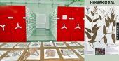 Colecciones biológicas en Veracruz