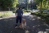 De perros, parvovirus y fauna silvestre